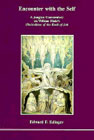 Encounter with the Self: A Jungian Commentary on William Blake's Illustrations of the Book of Job