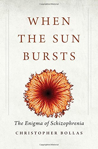 When the Sun Bursts: The Enigma of Schizophrenia