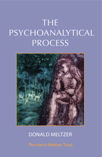 The Psychoanalytical Process