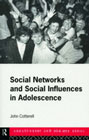 Social networks and social influences in adolescence: