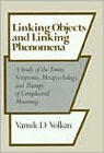 Linking Objects and Linking Phenomena