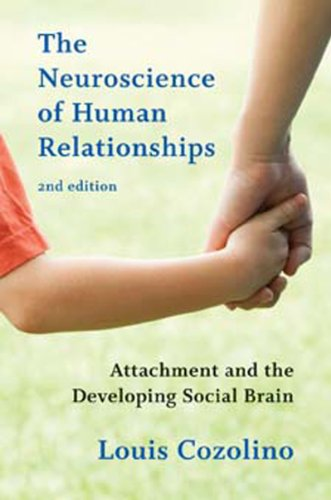 The Neuroscience of Human Relationships: Attachment and the Developing Social Brain: Second Edition