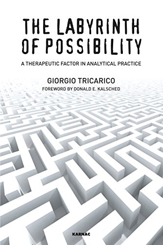 The Labyrinth of Possibility: A Therapeutic Factor in Analytical Practice
